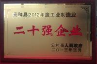 2012工业二十强